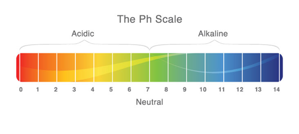 Finding the Acid / Alkaline Balance